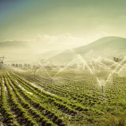 Análise territorial para agricultura irrigada é tema de estudo