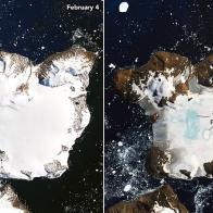 Calor histórico causa derretimento de neve em ilha da Antártica