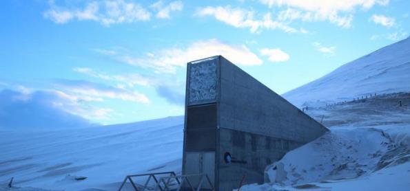 Brasil envia sementes para caixa-forte no Ártico