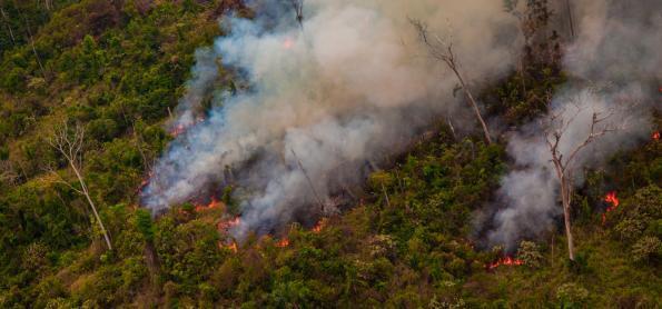 Conselho prepara ação preventiva contra queimadas na Amazônia