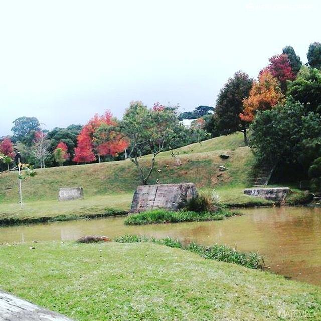 PR_Curitiba_ por wesley outono