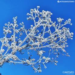Quinta-feira amanhece congelante no Sul do Brasil