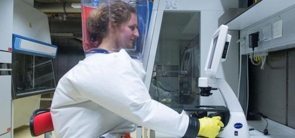 Brasil pode virar laboratório para vacina contra covid-19