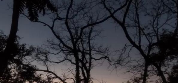 Terça-feira com recorde de frio em SP
