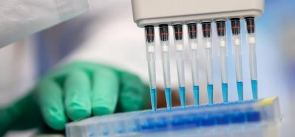 Para que servem os testes de anticorpos do coronavírus