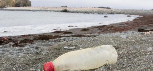 Plástico é encontrado no ecossistema terrestre da Antártida