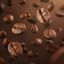 Exportações dos Cafés do Brasil batem recorde histórico