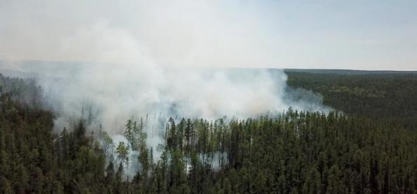 Estudo vincula onda de calor na Sibéria à ação humana