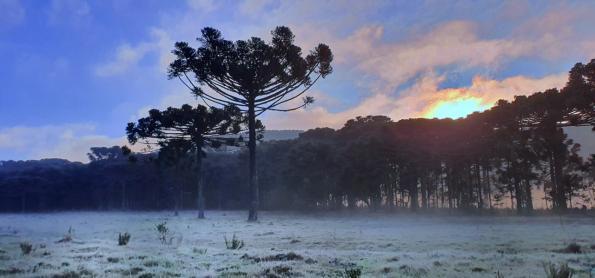 Inverno termina com geada e temperaturas negativas