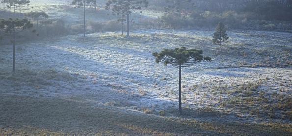 São Joaquim registra geada e amanhecer abaixo de 0ºC