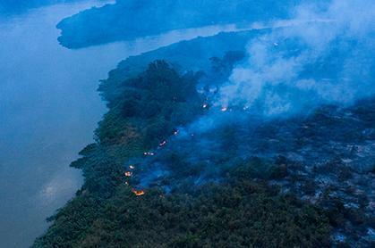 Decoada: volta das chuvas é tragédia ambiental extra no Pantanal