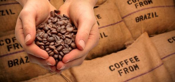 Região Sudeste produz 87,5% dos Cafés do Brasil em 2020