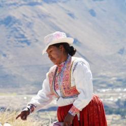 10 programas imperdíveis que você precisa fazer no Peru