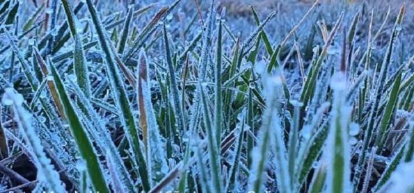 Onda de frio vai provocar geada no Sul em plena primavera