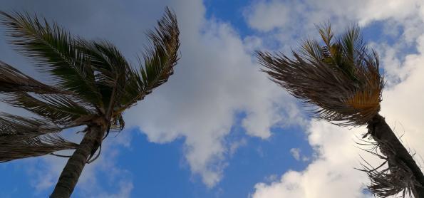 Ventos se intensificam no Sul do BR nos próximos dias