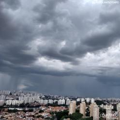 Chuva de novembro de 2020 em São Paulo ficou dentro da média