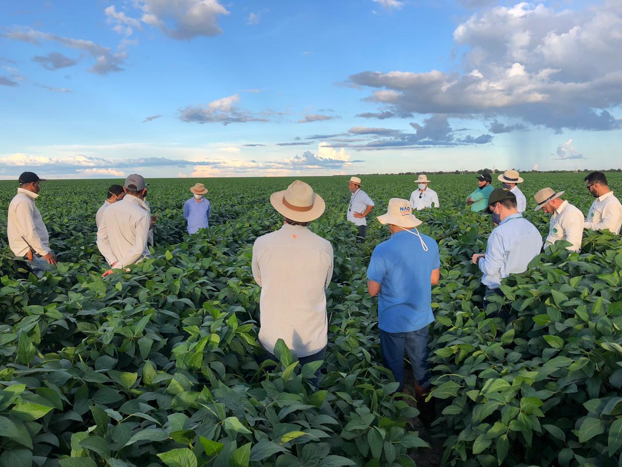 Programa fitossanitário abapa_reunião com produtores