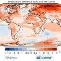 2020 iguala 2016 como ano mais quente já registrado no planeta