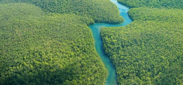 O desmatamento da Amazônia e o Sistema Cantareira