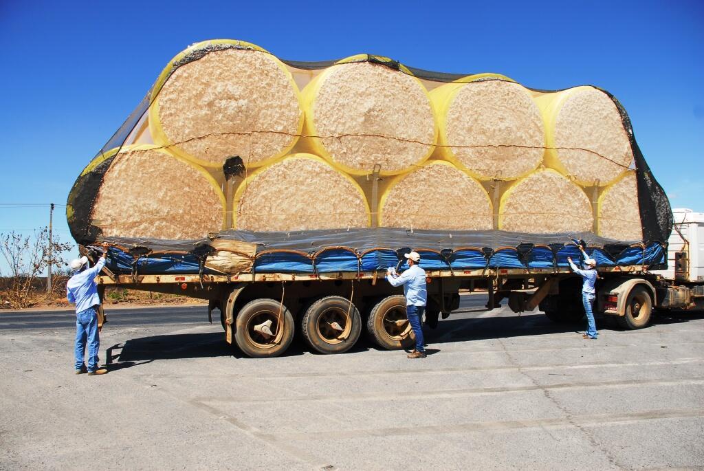 Programa fitossanitário Abapa_orientação transporte adequado do algodão