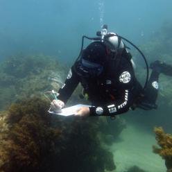 Expedição vai monitorar a saúde dos recifes no sul da BA