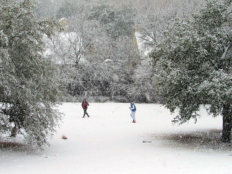 Winter_Storm_Uri_in_Austin,_Texas_01
