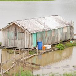 Chuvas extremas na Amazônia prejudicam gestantes e bebês