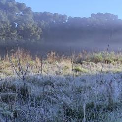 Frio aumenta a partir desta quarta e Sul do BR tem mais geada