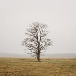 Noroeste de SP em seca excepcional