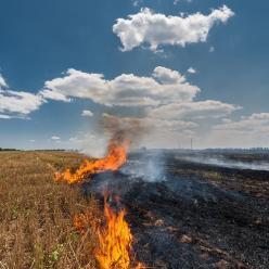 Tempo seco e possibilidade de queimadas acende o alerta