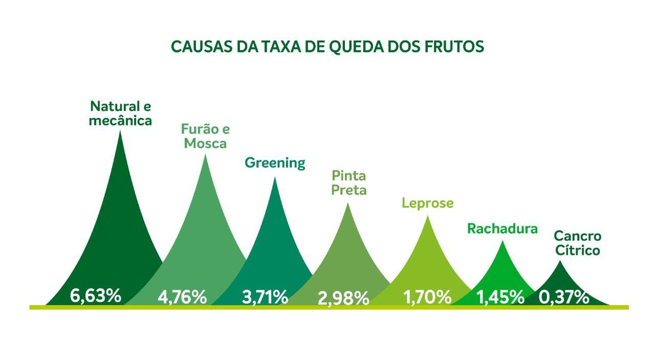 grafico2_Fundecitrus