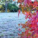 Sexta gelada no Sul. Frio invade SP, MS, sul de MT, RO e AC
