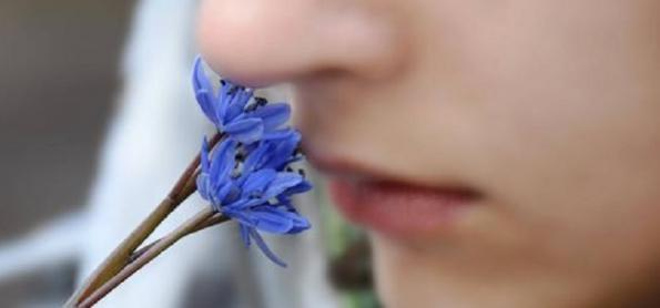 Treinando para recuperar o olfato após a covid-19
