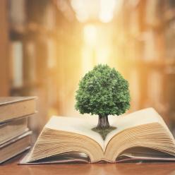 3 dicas de livros para ajudar o planeta