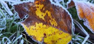 Maior frio do ano? Temperaturas negativas, geada e até neve!