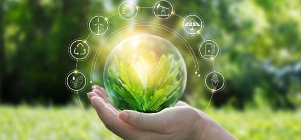 6 coisas que você pode fazer para combater o aquecimento global