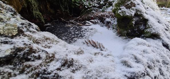 Neve marca chegada do frio ao Sul do Brasil nesta quarta