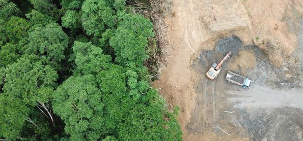 Maior floresta úmida do mundo, Amazônia queima de novo