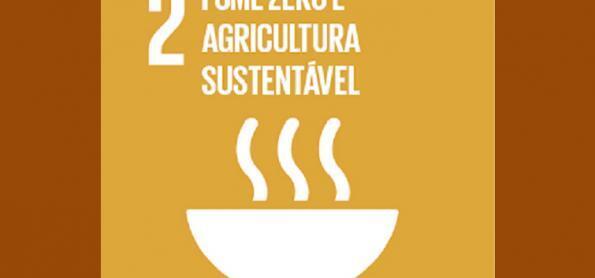 ODS 2: acabar com a fome e promover a agricultura sustentável
