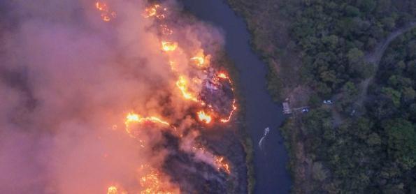 Caatinga tem aumento no número de queimadas