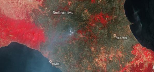 Incêndios devastam a ilha grega de Evia