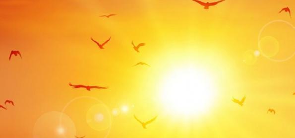 Calor aumenta em Campo Grande e Cuiabá e pode ser recorde
