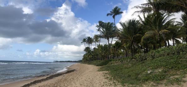 Tempo segue instável em Alagoas e Pernambuco
