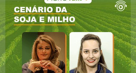 Boletim agrícola: cenário de milho e soja no AgroTalk