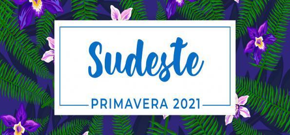 Primavera 2021: previsão para a Região Sudeste