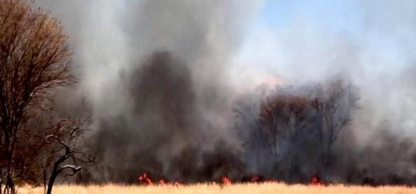 Brasil já registra mais de 100 mil focos de incêndio em 2021