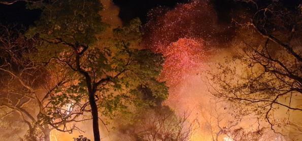 Minas Gerais é o estado com maior focos de queimadas em setembro