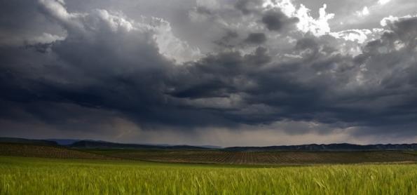 A agricultura oferece algumas soluções para a mudança do clima