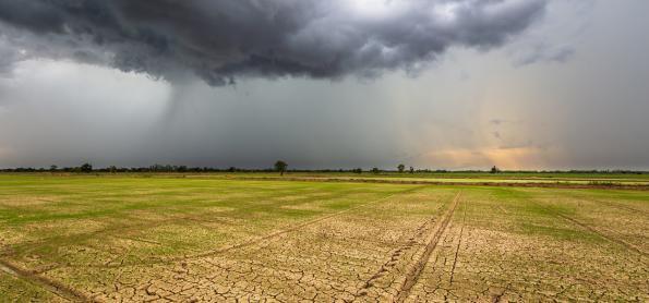 La Niña e os impactos na safra de verão