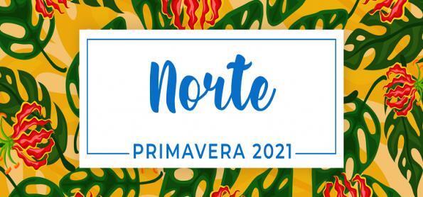 Primavera 2021: previsão para a Região Norte